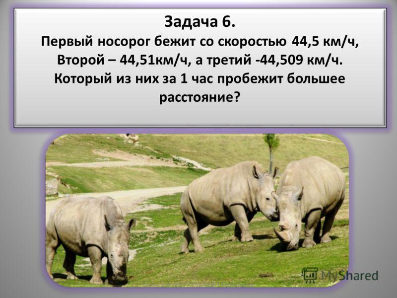 Задача 6. Первый носорог бежит со скоростью 44,5 км/ч, Второй – 44,51км/ч, а третий -44,509 км/ч. Который из них за 1 час пробежит большее расстояние? Задача 6. Первый носорог бежит со скоростью 44,5 км/ч, Второй – 44,51км/ч, а третий -44,509 км/ч. К