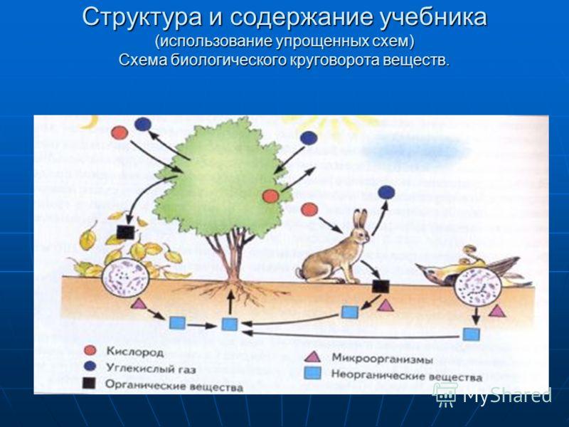 Структура и содержание учебника (использование упрощенных схем) Схема биологического круговорота веществ.