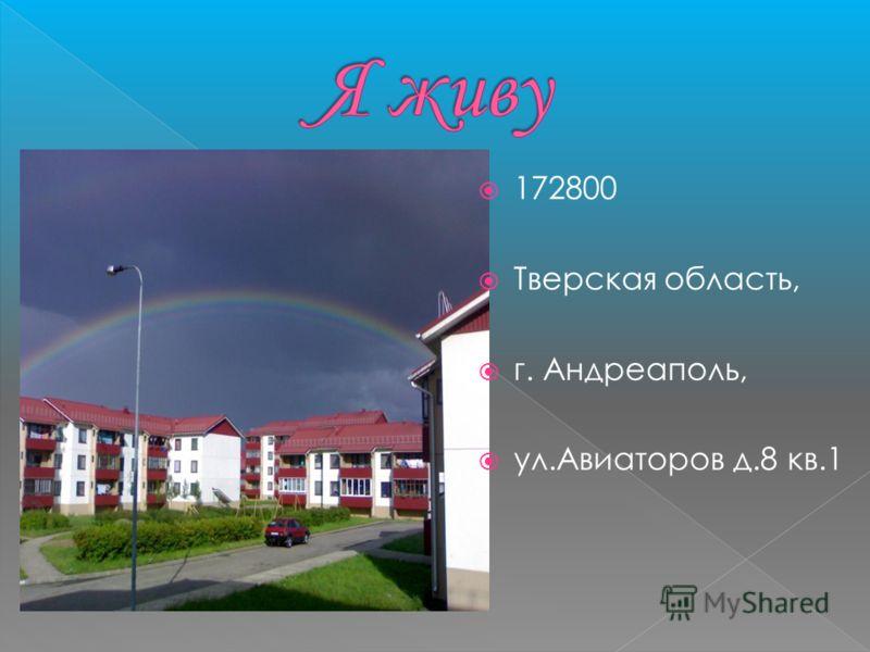 172800 Тверская область, г. Андреаполь, ул.Авиаторов д.8 кв.1