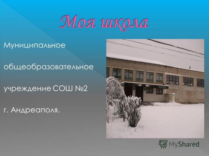 Муниципальное общеобразовательное учреждение СОШ 2 г. Андреаполя.