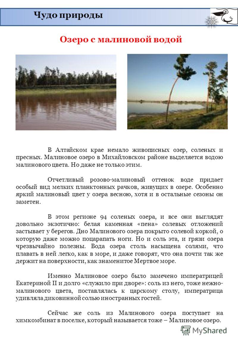 Чудо природы Озеро с малиновой водой В Алтайском крае немало живописных озер, соленых и пресных. Малиновое озеро в Михайловском районе выделяется водою малинового цвета. Но даже не только этим. Отчетливый розово-малиновый оттенок воде придает особый