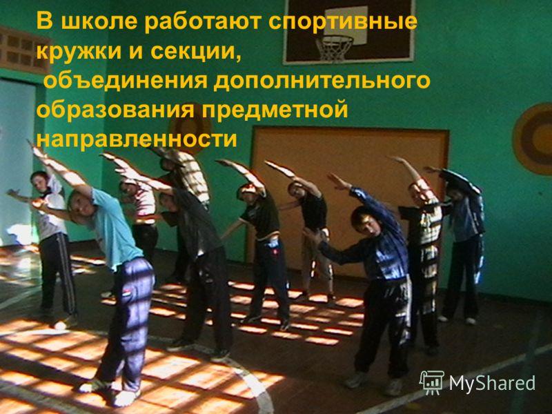 В школе работают спортивные кружки и секции, объединения дополнительного образования предметной направленности