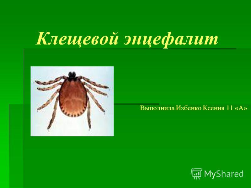 Клещевой энцефалит Выполнила Избенко Ксения 11 «А»