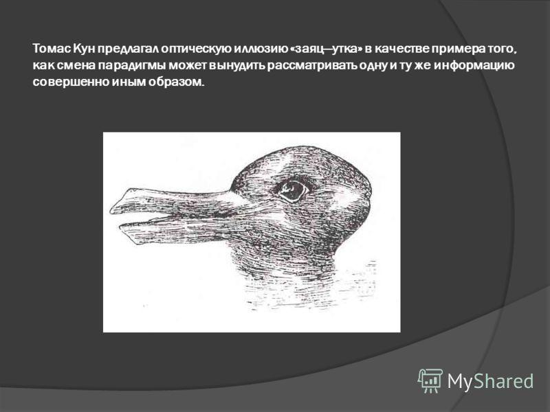 Томас Кун предлагал оптическую иллюзию «заяцутка» в качестве примера того, как смена парадигмы может вынудить рассматривать одну и ту же информацию совершенно иным образом.