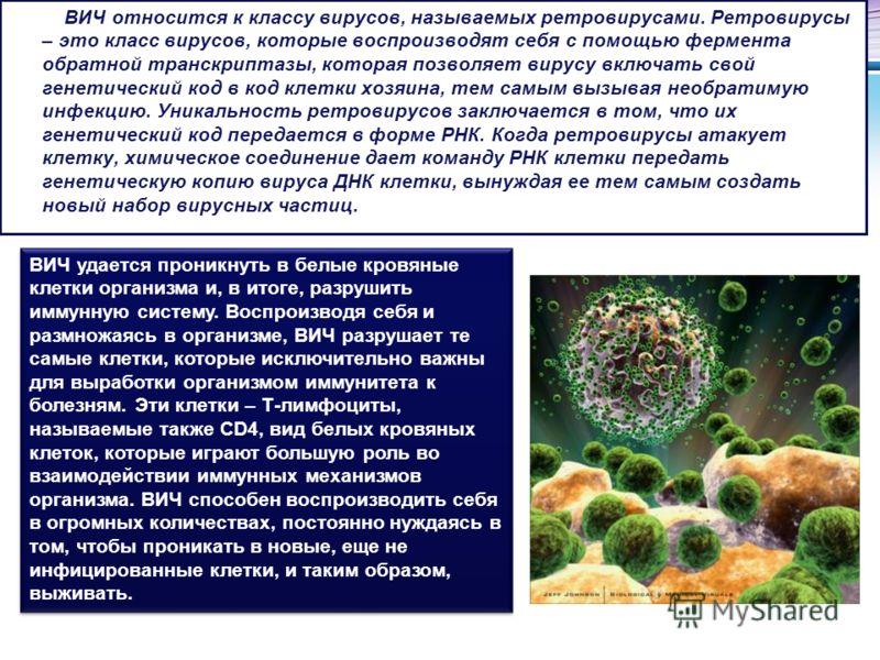 LOGO ВИЧ относится к классу вирусов, называемых ретровирусами. Ретровирусы – это класс вирусов, которые воспроизводят себя с помощью фермента обратной транскриптазы, которая позволяет вирусу включать свой генетический код в код клетки хозяина, тем са