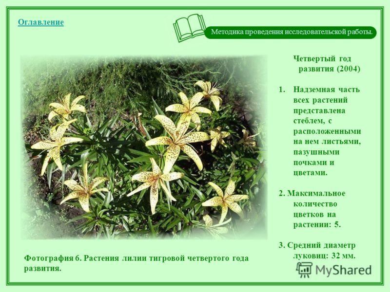 Методика проведения исследовательской работы. Оглавление Четвертый год развития (2004) 1.Надземная часть всех растений представлена стеблем, с расположенными на нем листьями, пазушными почками и цветами. 2. Максимальное количество цветков на растении