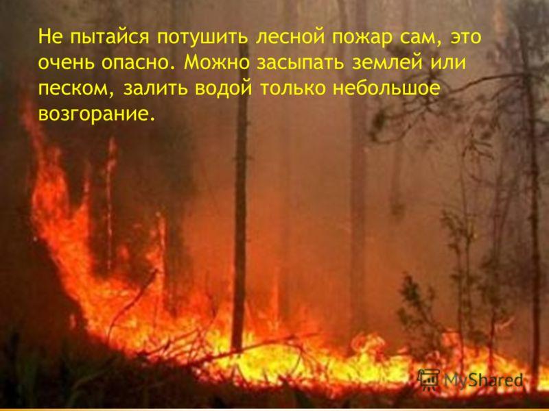 Не пытайся потушить лесной пожар сам, это очень опасно. Можно засыпать землей или песком, залить водой только небольшое возгорание.
