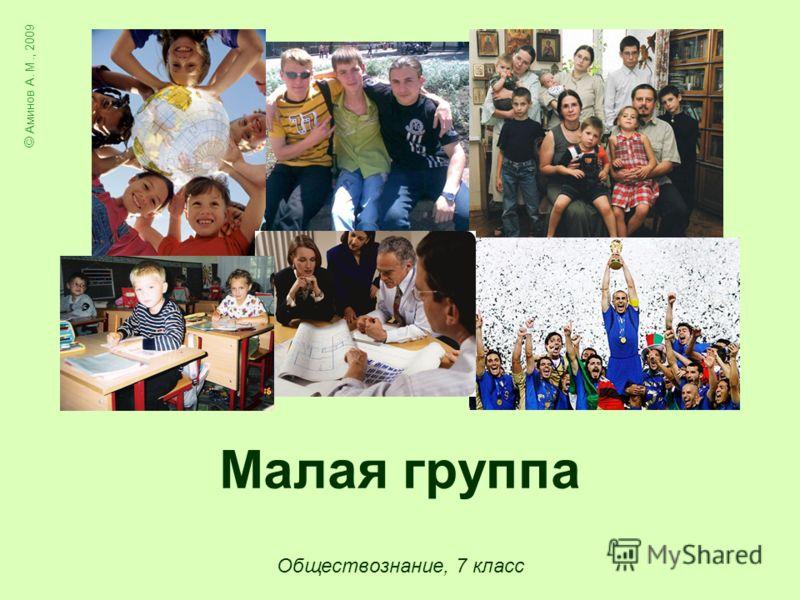 Малая группа Обществознание, 7 класс © Аминов А. М., 2009