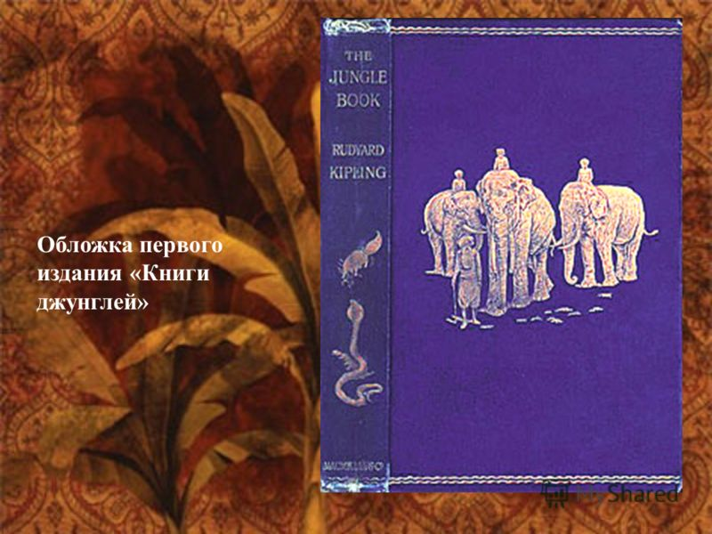 Обложка первого издания «Книги джунглей»