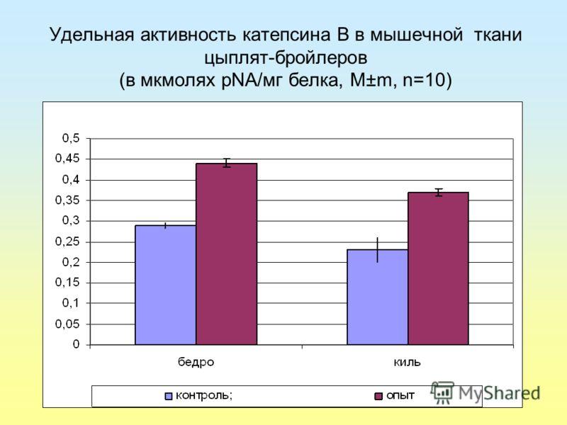 Удельная активность катепсина В в мышечной ткани цыплят-бройлеров (в мкмолях pNA/мг белка, М±m, n=10)