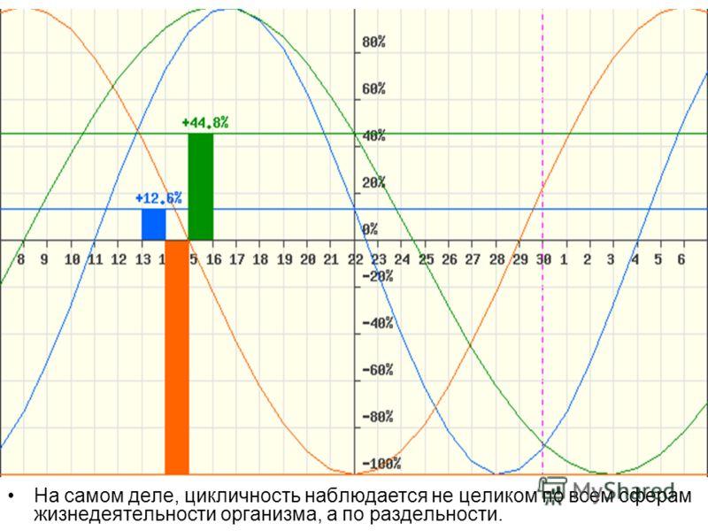 На самом деле, цикличность наблюдается не целиком по всем сферам жизнедеятельности организма, а по раздельности.