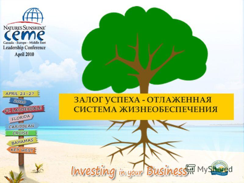 Представительство Компании в СНГ, Балтии и Закавказье NSP-производитель, штаб-квартира, США