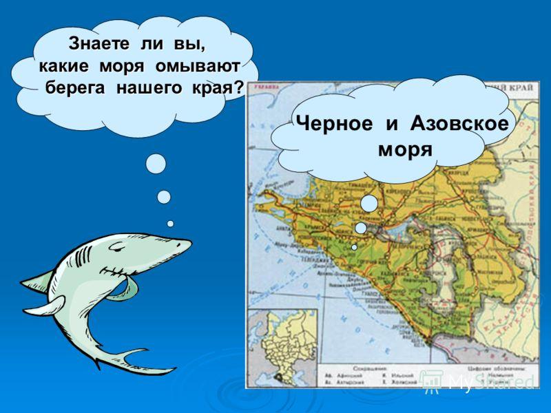 Здравствуйте, ребята! Меня зовут Золотая рыбка. Сегодня мы побываем на берегах морей берегах морей Краснодарского края, откроем Краснодарского края, откроем тайны морских глубин. тайны морских глубин. Ничего у вас не Ничего у вас не получится. получи
