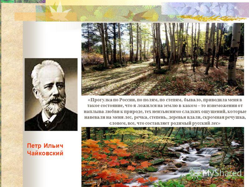 Петр Ильич Чайковский «Прогулка по России, по полям, по степям, бывало, приводила меня в такое состояние, что я ложился на землю в каком – то изнеможении от наплыва любви к природе, тех неизъяснимо сладких ощущений, которые навевали на меня лес, речк