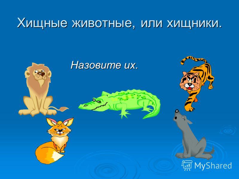 Хищные животные, или хищники. Назовите их. Назовите их.