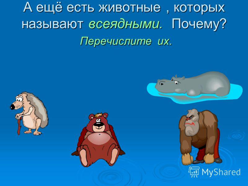А ещё есть животные, которых называют всеядными. Почему? Перечислите их.