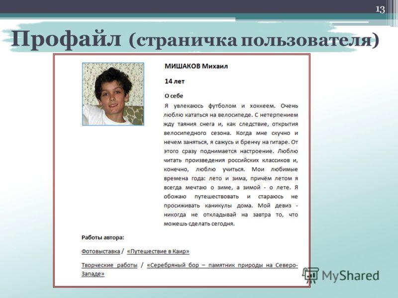 Профайл (страничка пользователя) 13