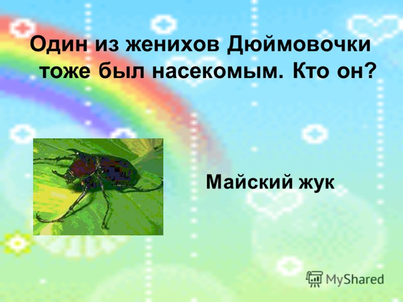 Один из женихов Дюймовочки тоже был насекомым. Кто он? Майский жук