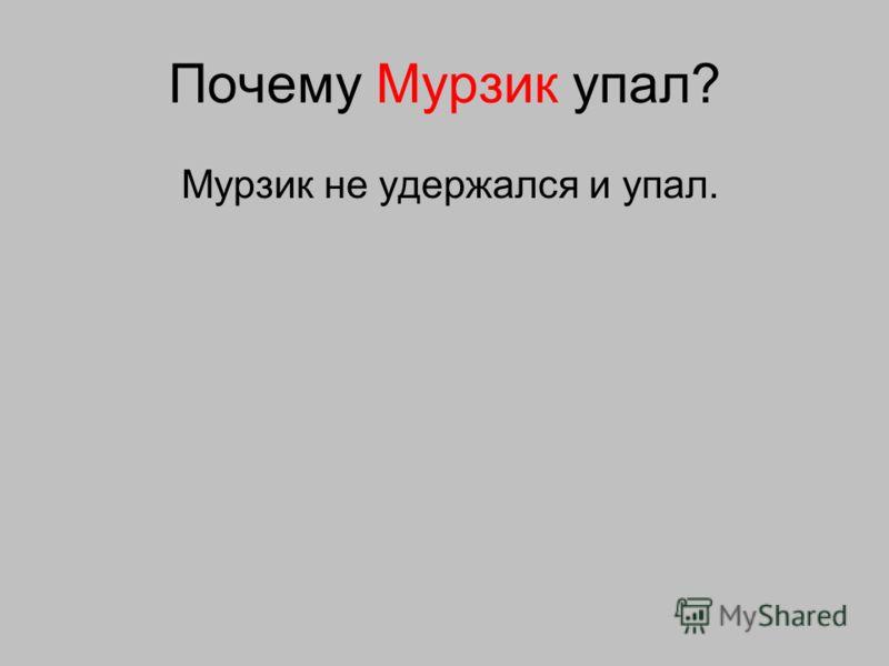 Почему Мурзик упал? Мурзик не удержался и упал.