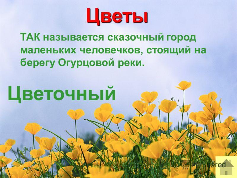 Цветы ТАК называется сказочный город маленьких человечков, стоящий на берегу Огурцовой реки. Цветочный