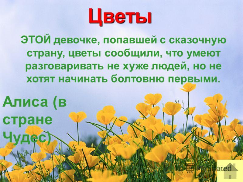 Цветы ЭТОЙ девочке, попавшей с сказочную страну, цветы сообщили, что умеют разговаривать не хуже людей, но не хотят начинать болтовню первыми. Алиса (в стране Чудес)