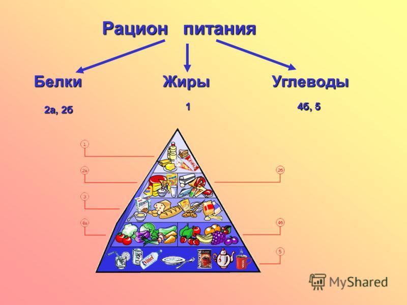 Рацион питания БелкиЖирыУглеводы 2а, 2б 1 4б, 5