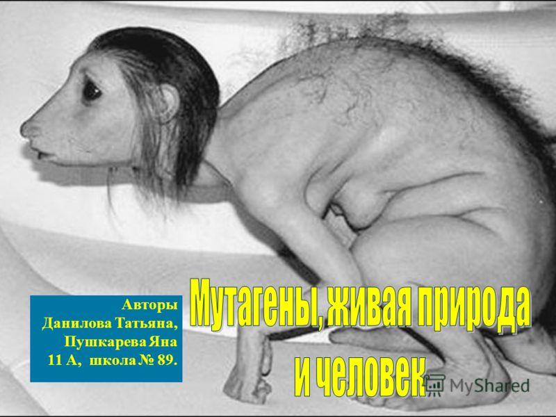 Авторы Данилова Татьяна, Пушкарева Яна 11 А, школа 89.