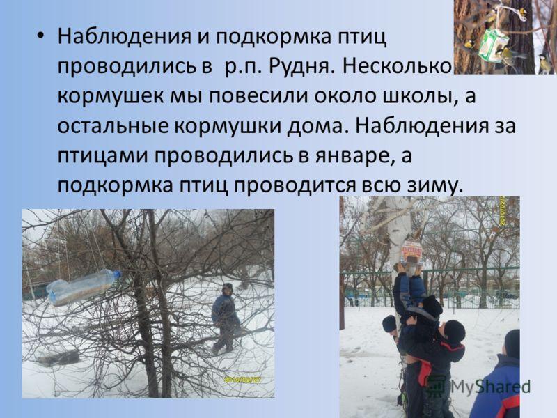 Наблюдения и подкормка птиц проводились в р.п. Рудня. Несколько кормушек мы повесили около школы, а остальные кормушки дома. Наблюдения за птицами проводились в январе, а подкормка птиц проводится всю зиму.