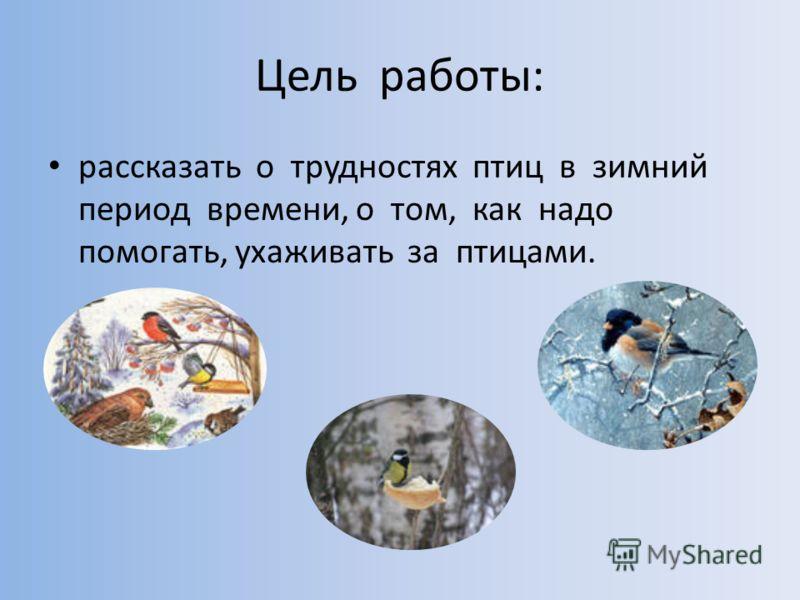 Цель работы: рассказать о трудностях птиц в зимний период времени, о том, как надо помогать, ухаживать за птицами.