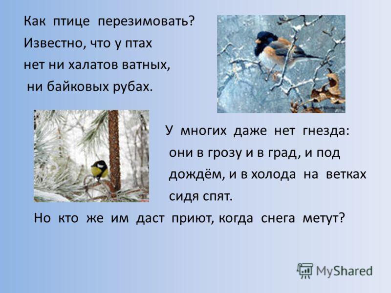 Как птице перезимовать? Известно, что у птах нет ни халатов ватных, ни байковых рубах. У многих даже нет гнезда: они в грозу и в град, и под дождём, и в холода на ветках сидя спят. Но кто же им даст приют, когда снега метут?