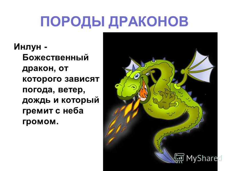 ПОРОДЫ ДРАКОНОВ Инлун - Божественный дракон, от которого зависят погода, ветер, дождь и который гремит с неба громом.
