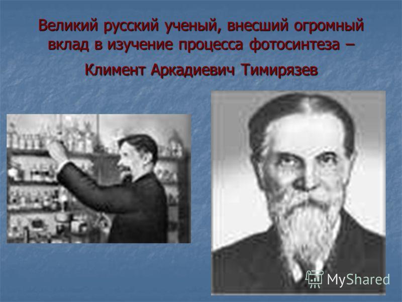Великий русский ученый, внесший огромный вклад в изучение процесса фотосинтеза – Климент Аркадиевич Тимирязев