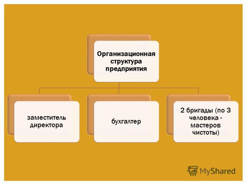 Организационн ая структура предприятия заместитель директора бухгалтер 2 бригады (по 3 человека - мастеров чистоты)