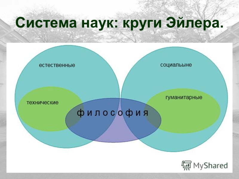 Система наук: круги Эйлера.