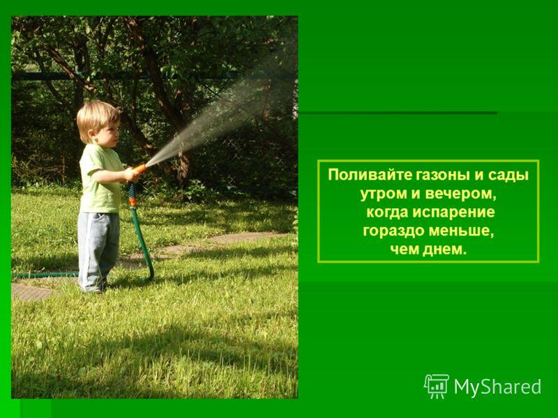 Поливайте газоны и сады утром и вечером, когда испарение гораздо меньше, чем днем.