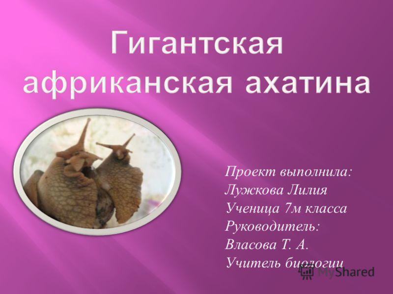 Проект выполнила : Лужкова Лилия Ученица 7 м класса Руководитель : Власова Т. А. Учитель биологии