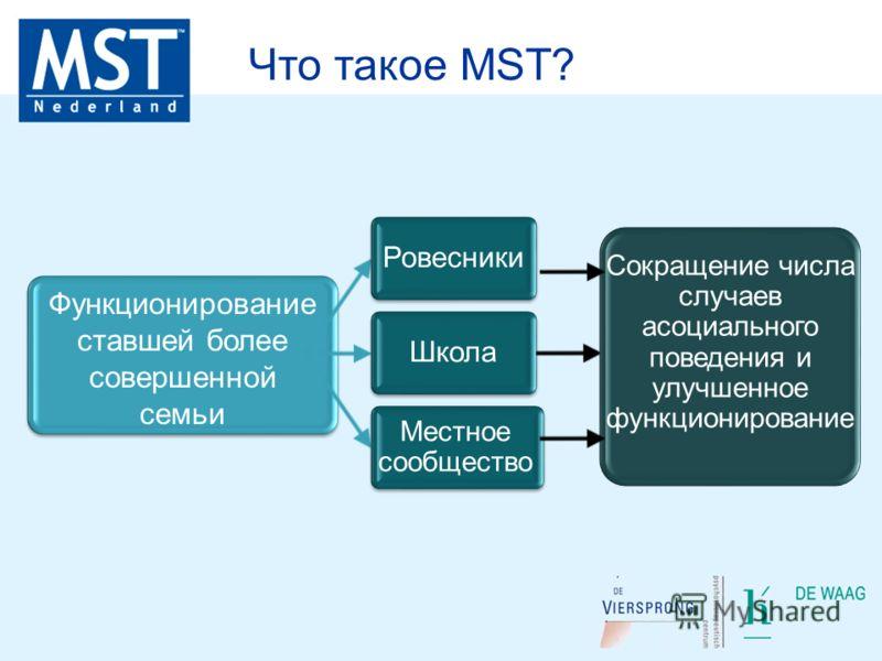 Функционирование ставшей более совершенной семьи РовесникиШкола Сокращение числа случаев асоциального поведения и улучшенное функционирование Местное сообщество Что такое MST?
