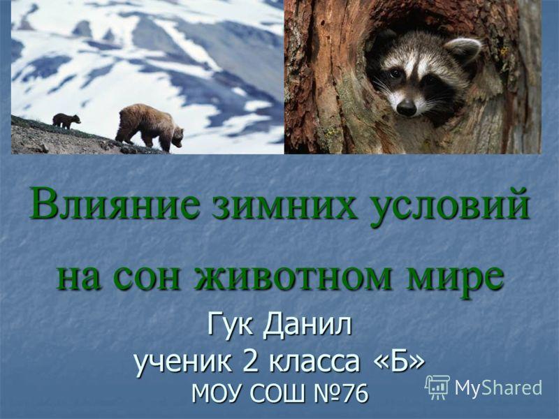 Влияние зимних условий на сон животном мире Гук Данил ученик 2 класса «Б» МОУ СОШ 76