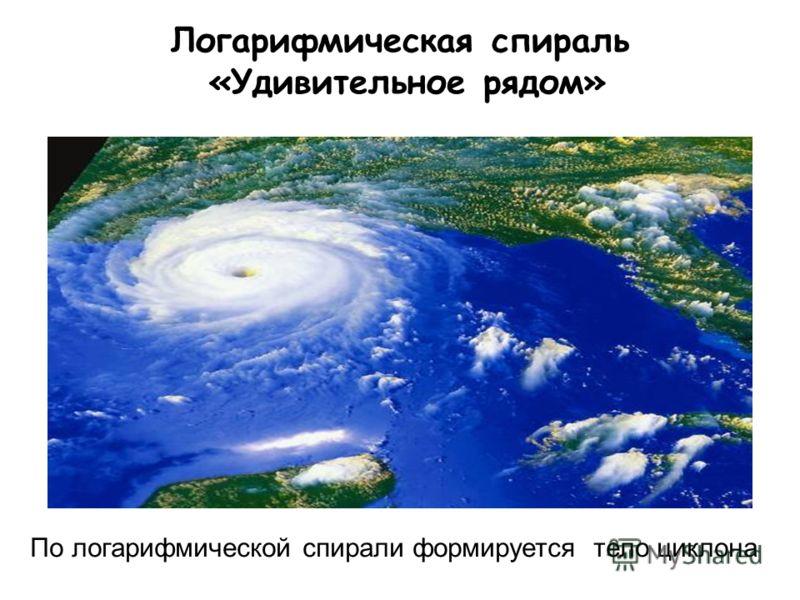 Логарифмическая спираль «Удивительное рядом» По логарифмической спирали формируется тело циклона