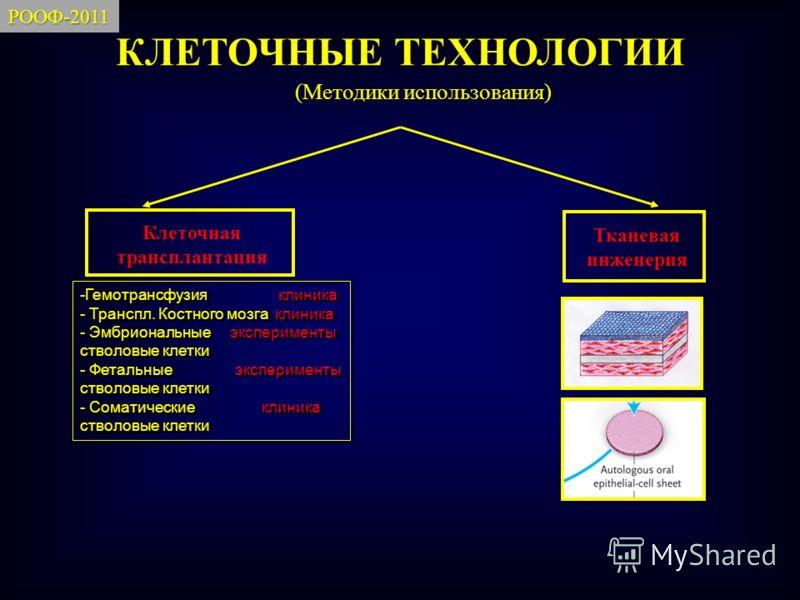 КЛЕТОЧНЫЕ ТЕХНОЛОГИИ Клеточная трансплантация Тканевая инженерия -Гемотрансфузия клиника - Транспл. Костного мозга клиника - Эмбриональные эксперименты стволовые клетки - Фетальные эксперименты стволовые клетки - Соматические клиника стволовые клетки