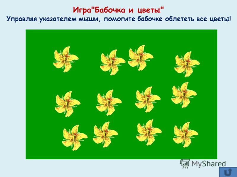 ИграБабочка и цветы Управляя указателем мыши, помогите бабочке облететь все цветы!