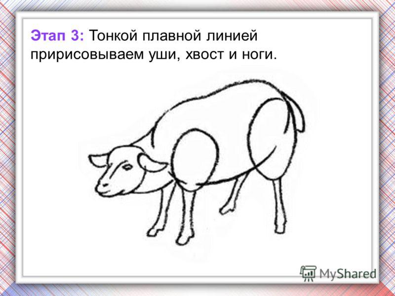 Этап 3: Тонкой плавной линией пририсовываем уши, хвост и ноги.