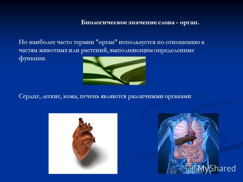 Но наиболее часто термин орган используется по отношению к частям животных или растений, выполняющим определенные функции. Сердце, легкие, кожа, печень являются различными органами Биологическое значение слова - орган.