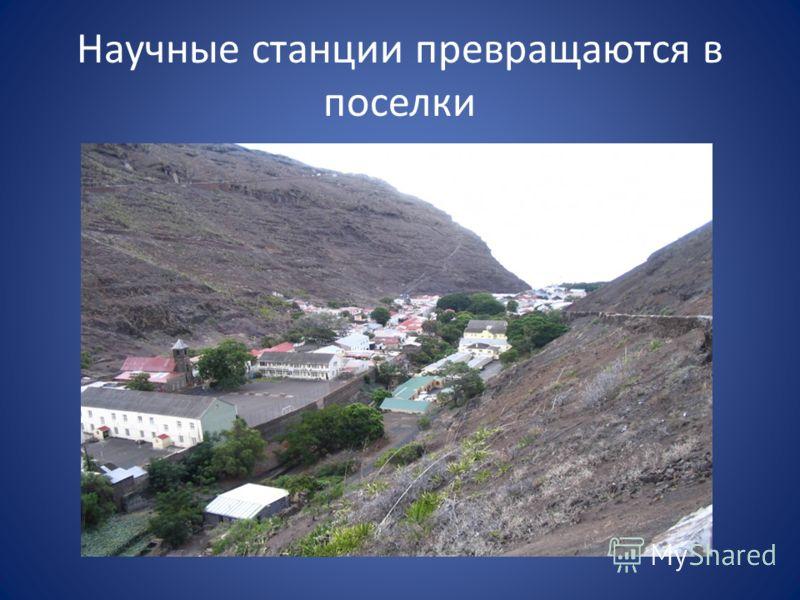 Научные станции превращаются в поселки