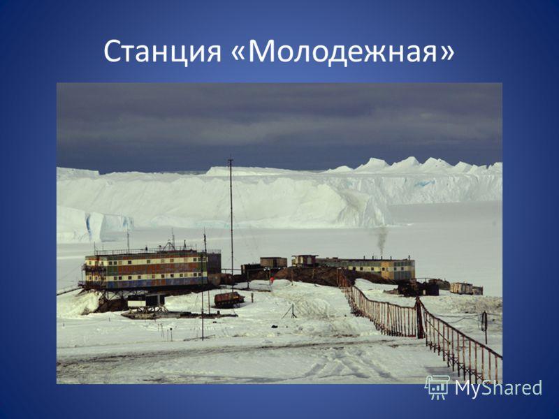 Станция «Молодежная»