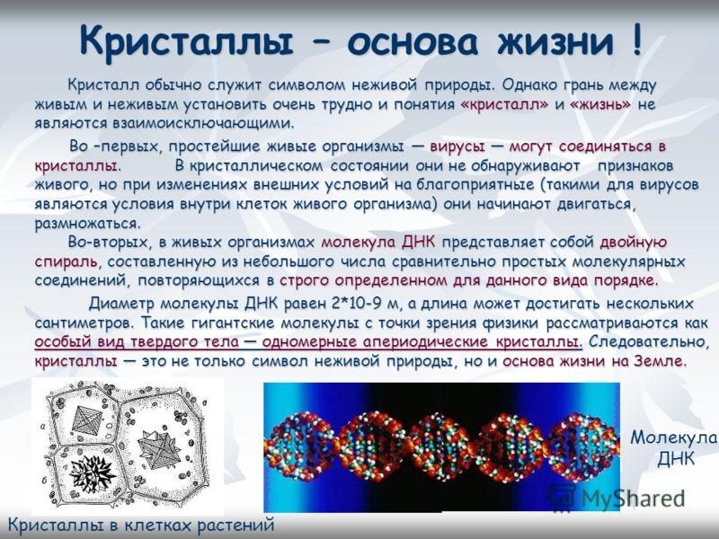 Кристаллы – основа жизни ! Кристалл обычно служит символом неживой природы. Однако грань между живым и неживым установить очень трудно и понятия «кристалл» и «жизнь» не являются взаимоисключающими. Кристалл обычно служит символом неживой природы. Одн