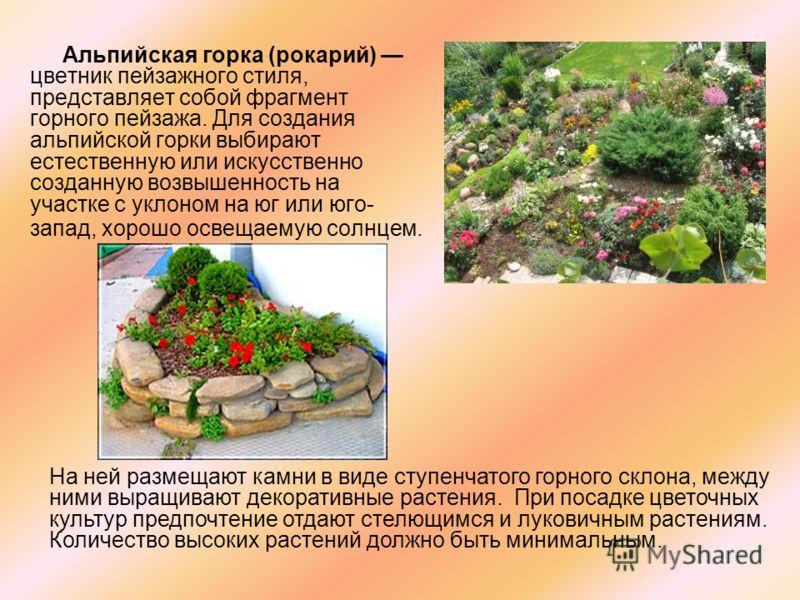 Альпийская горка (рокарий) цветник пейзажного стиля, представляет собой фрагмент горного пейзажа. Для создания альпийской горки выбирают естественную или искусственно созданную возвышенность на участке с уклоном на юг или юго- запад, хорошо освещаем