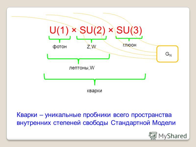 U(1) × SU(2) × SU(3) глюон фотон Z,W лептоны,W кварки GNGN Кварки – уникальные пробники всего пространства внутренних степеней свободы Стандартной Модели