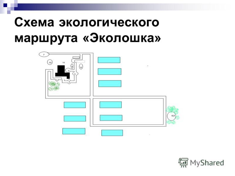 Схема экологического маршрута «Эколошка»