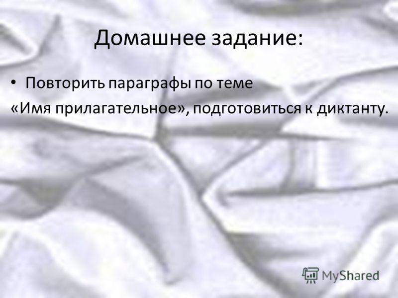 Домашнее задание: Повторить параграфы по теме «Имя прилагательное», подготовиться к диктанту.